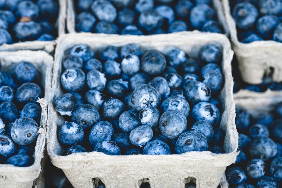 craving blueberries